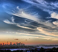 Sydney Harbour from Dover Heights by andreisky