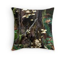 FaerieLand Throw Pillow