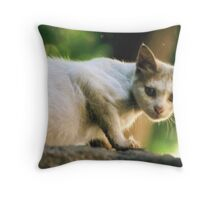 Egyptian Stray Throw Pillow