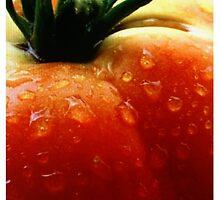What a tomato! by mandosar