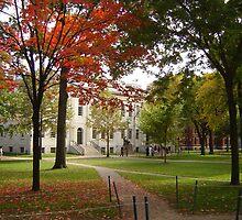 Harvard University Campus Mall by clizzio