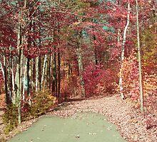 automne de reve 02_ v1 by Aimelle