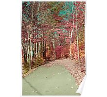 automne de reve 02_ v1 Poster