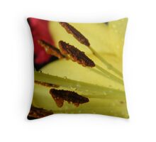 Dripping chocolate biscuits Throw Pillow