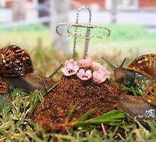RIP George Snail by Pene Stevens