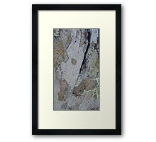 The picturesque fence 3 Framed Print