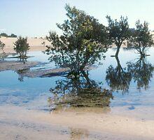 Stockton Bight Lagoons by Bernadette Smith (c) by smithrankenART