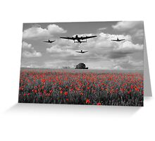 Over The Fields - Selective  Greeting Card