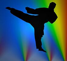 Silhouette karate man by happyphotos
