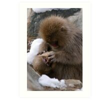 Macaque: Mother and Son Art Print