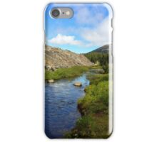 Stream Running down the mountain iPhone Case/Skin