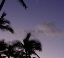 Portfolio: Palms at sunset, Mahaiula Bay, Big Island Sticker
