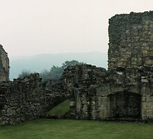Fireplace in buildings Bylands Abbey North Yorkshire England Elite 198406020033 by Fred Mitchell