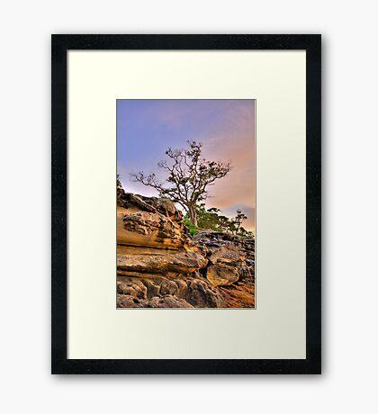 Reach For The Sky - Balmoral Beach - The HDR Series Framed Print