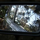 Rear Vision by TracyD