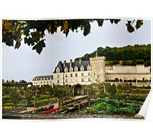 Villandry Castle - Loire Valley - France Poster