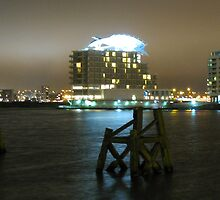 Cardiff Bay by AlvinBurt
