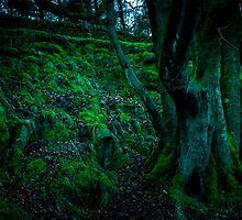 Mossy Hill by bmosborn