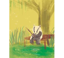 There's a Badger in that there Bayou! Photographic Print
