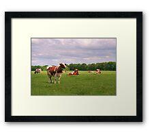Hi Cow! Framed Print