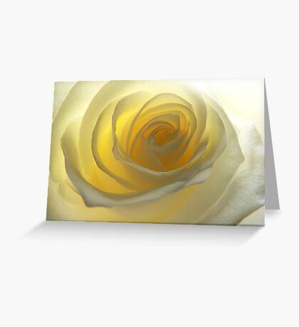 Pale Yellow Rose Greeting Card