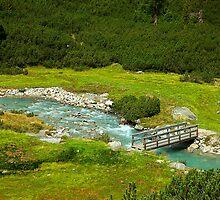 Little Wooden Bridge by Xandru
