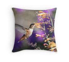 Purple By-Pass Throw Pillow