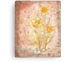 The Grunge Daffodils Canvas Print