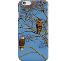 Just Chilling iPhone Case/Skin