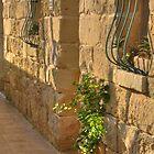 Limestone doorway by M G  Pettett