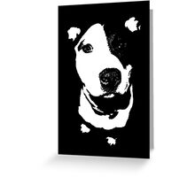 Louie - Black and white pit bull Greeting Card