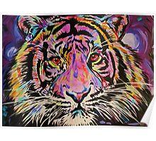 Pop Art Tiger Eyes Poster
