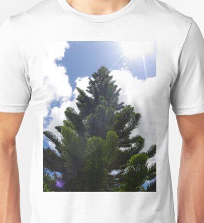 Portfolio: Captain Cook pine and sun flare, Hilo, Big Island Unisex T-Shirt