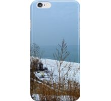 Milwaukee Winter iPhone Case/Skin