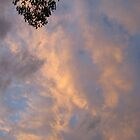 Stormy sunsets 1 by lillypilly
