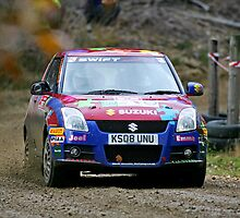 Tempest Rally Suzuki Swift by Mark Greenwood