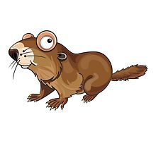 Groundhog Cartoon Character by Gotcha29