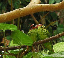 2 love birds by memphisto
