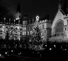 Houses of Parliament at Christmas by Kathleen Conklin