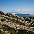 Glimpses of Acadia by Denise Goldberg