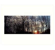 Sunrise in Trees Art Print