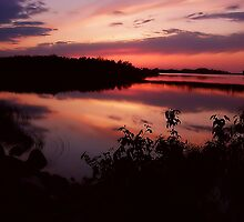 marsh sunset 2 by Cheryl Dunning