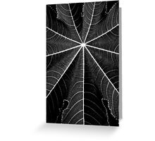 natural symmetry Greeting Card