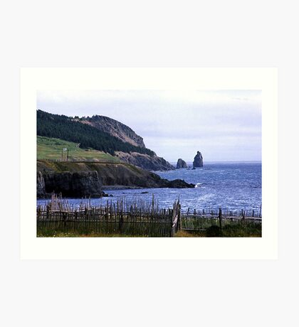 Near Harbour Grace Art Print