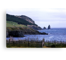 Near Harbour Grace Canvas Print