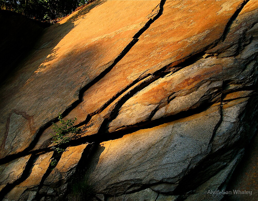 Lines In Stone by Alvin-San Whaley