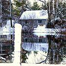 A Winter Reflection..... by Larry Llewellyn