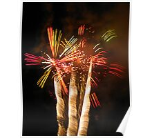 Firework Palm Trees Poster
