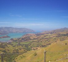 Akaroa harbour view by rosswilliams