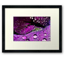 Velvet Sparkles Framed Print
